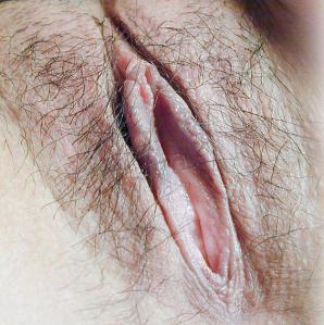 Gros sexe Penetration